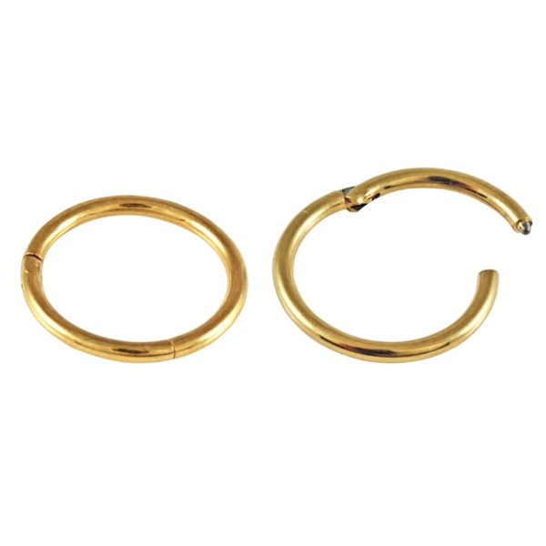 Hinged Segment Ring - PVD Gold Titanium