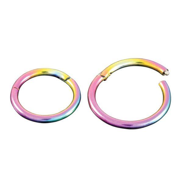 Hinged Segment Ring - Rainbow Titanium